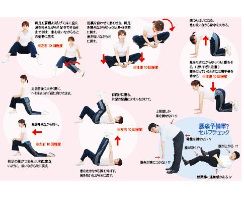 ストレッチで健康づくり(2)/腰痛予防・改善のストレッチと ...